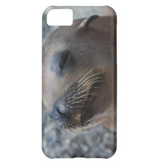 Sea Lion Star iPhone 5C Cases