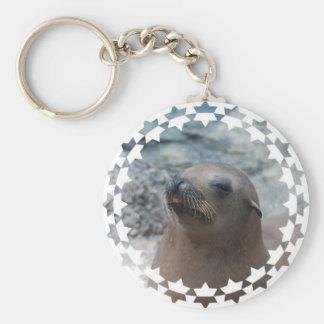 Sea Lion Star Key Chains