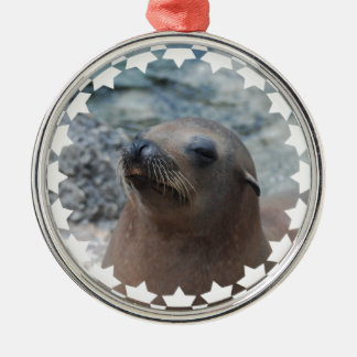 Sea Lion Star Christmas Ornament
