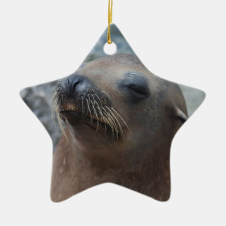 Sea Lion Star Christmas Tree Ornament