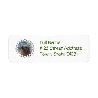 Sea Lion Star Return Address Label