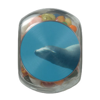 Sea Lion Underwater Jelly Belly Candy Jars