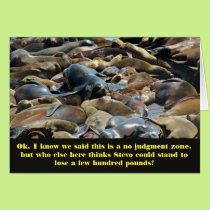 Sea lion Wisdom lose weight Card