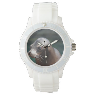 Sea Lion with a Cute Face Wrist Watch