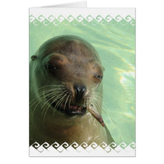 Sea Lion with Fish Card