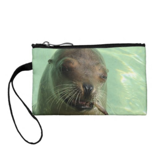 Sea Lion with Fish Coin Purse