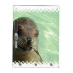 Sea Lion with Fish Dry Erase Board