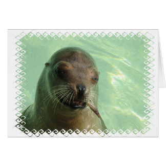 Sea Lion with Fish Greeting Card