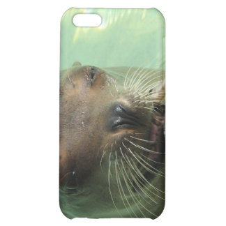 Sea Lion with Fish iPhone Case iPhone 5C Cases