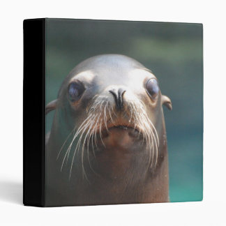 Sea Lion with Whiskers 3 Ring Binder
