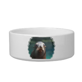 Sea Lion with Whiskers Bowl