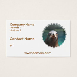 Sea Lion with Whiskers Business Card