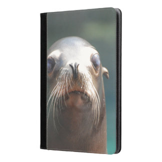 Sea Lion with Whiskers iPad Air Case