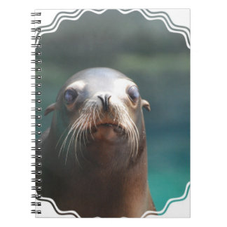 Sea Lion with Whiskers Notebook