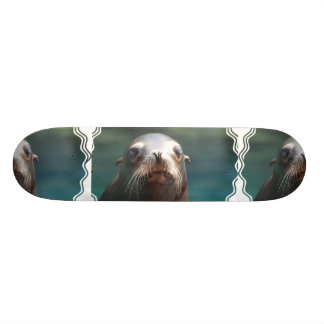 Sea Lion with Whiskers Skateboard