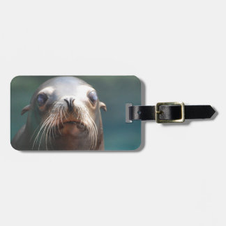 Sea Lion with Whiskers Tag For Luggage