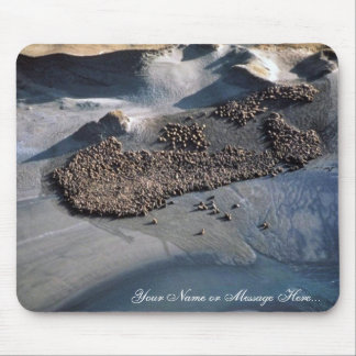 Sea Lions at Haulout - Aerial View Mouse Pad