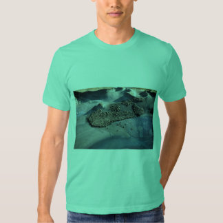 Sea Lions at Haulout - Aerial View T-shirt