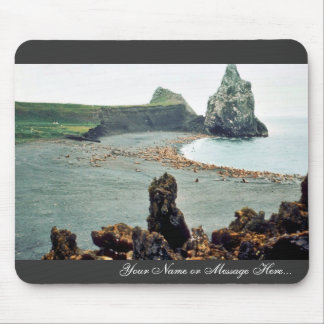 Sea Lions at Haulout Mouse Pad