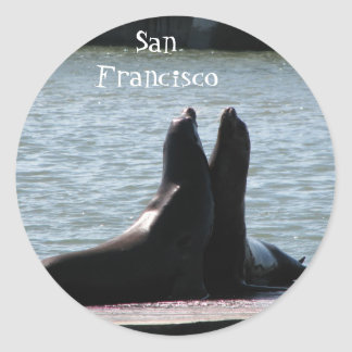 Sea Lions @ Fisherman's Wharf 8/2/... - Customized Round Stickers