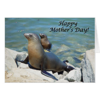 "Sea Lions ""Happy Mother's Day"" Card"