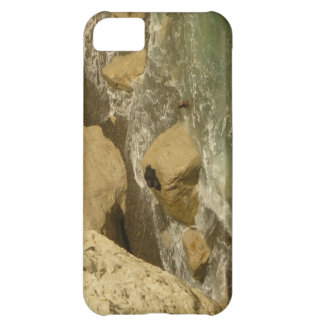 Sea lions in Patagonia iPhone 5C Case