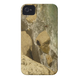Sea lions in Patagonia iPhone 4 Covers