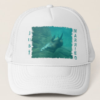 Sea Lions Just Married Hat