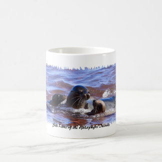 Sea Lions of Galapagosa Classic White Coffee Mug