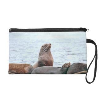 Sea Lions Photo Wristlet Clutches