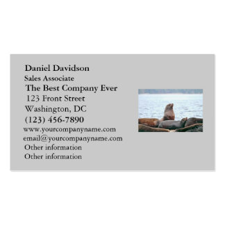 Sea Lions Photo Business Card