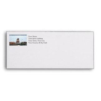 Sea Lions Photo Envelopes