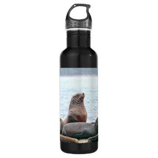 Sea Lions Photo Water Bottle