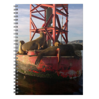 Sea Lions Relaxin on a Buoy in Dana Point Spiral Notebook