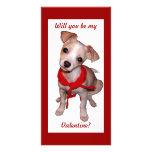 ¿Sea mi tarjeta del día de San Valentín? Tarjetas Fotográficas
