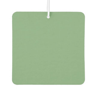 SEA MIST GREEN (solid color) ~