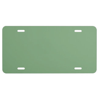SEA MIST GREEN (solid color) ~ License Plate