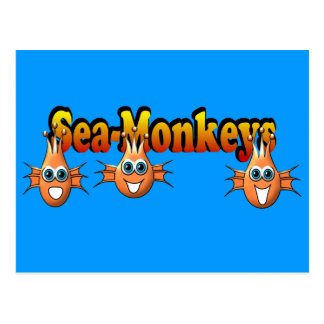 Sea Monkeys Monkees Design Postcard
