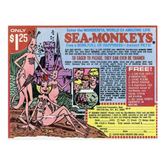 Sea Monkeys Post Card