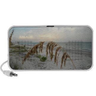 Sea Oat At Sunset Portable Speaker
