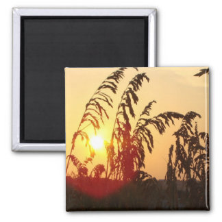 Sea Oat Sunrise 2 Inch Square Magnet