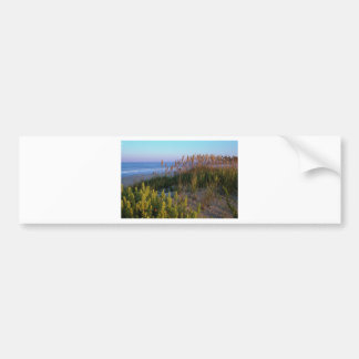 Sea Oats and Beach Elder Bumper Sticker