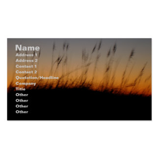 Sea Oats and Dunes at Sunset Double-Sided Standard Business Cards (Pack Of 100)