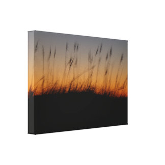 Sea Oats and Dunes at Sunset Canvas Print