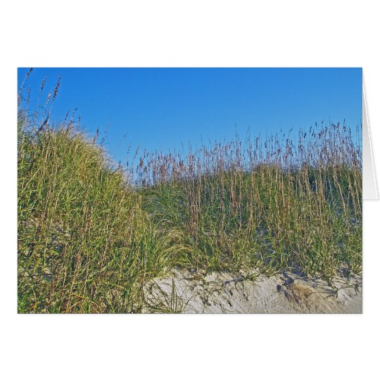 Sea Oats and Dunes OBX Note Card