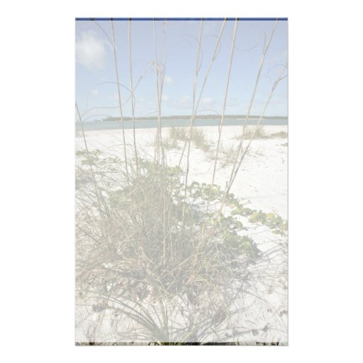 Sea oats and other beach vegetation personalized stationery