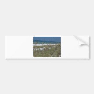Sea Oats and Waves Bumper Sticker