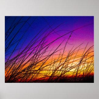 Sea Oats at Sunrise on Daytona Beach III Poster
