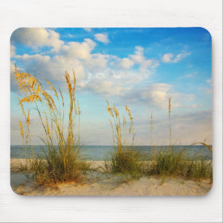 Sea Oats At the Beach Mouse Pad