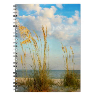 Sea Oats At the Beach Notebook